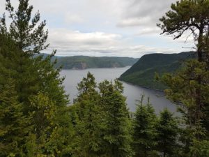 fjord-3605865_640